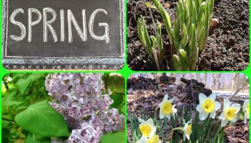 An April Note From Bill & Susan…