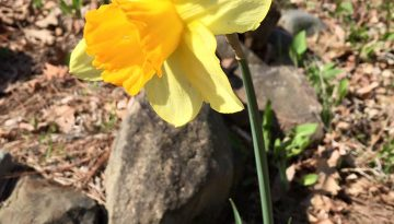 A March Note From Bill & Susan…
